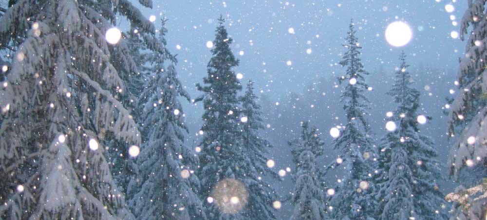 Animaciones Felicitaciones De Navidad.10 Efectos De Nieve En Jquery Para Navidad Programacion En
